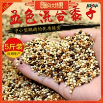 Wibi Five colors Millet Parrot feed mixed grain small sun Xuan Phoenix tiger Peel Parrot Bird Bird food 2.5kg