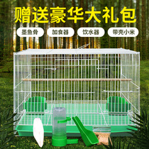 Bird cage pigeon cage Tiger parrot bird Starling embroidered eyes lark cage large large breeding breeding household