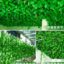 Wall hanging imitation green leaf ceiling decoration plastic green plant decoration ceiling sub-fake flower rattan Vine green radish
