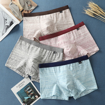 Mens boxer briefs cotton youth students Japanese breathable simple full-color stripes four corners of the bottom pants head