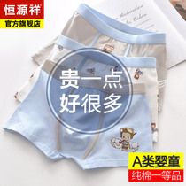 Hengyuanxiang childrens underwear male cotton summer thin section small boy baby in the big boy shorts boy boxer pants
