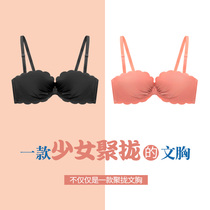 Shell underwear women gather adjustment girl student bra set no steel ring beauty back spring and summer thin section sexy