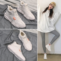 Bear shoes old shoes female ins tide 2019 new network red wild sports high to help Hong Kong wind white shoes tide shoes female