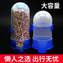 Pigeon drinking fountains automatic water feeding kettle pigeon supplies utensils parrot feeder bird with food bowl pigeon