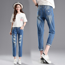 High waist Hole Jeans female spring 2019 New Korean edition skinny Hundred students loose broad-legged Harlan pants